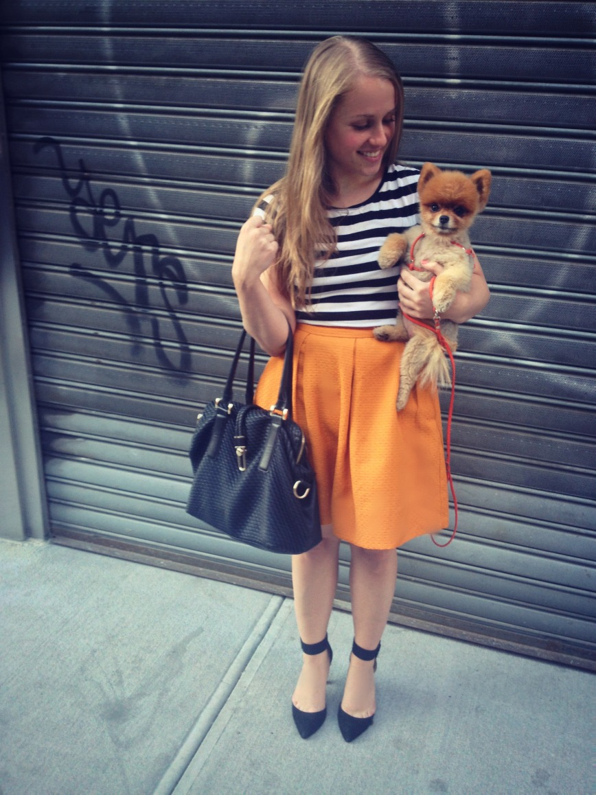 Striped tee, mustard skirt outfit with Amy the Pomeranian